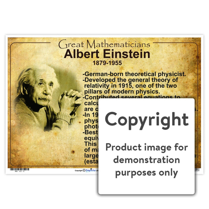 Great Mathematicians: Albert Einstein Wall Charts And Posters