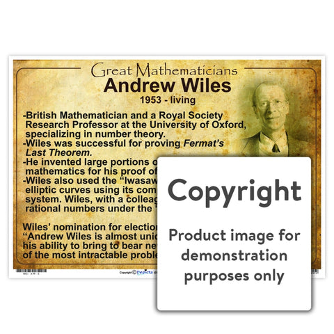 Great Mathematicians: Andrew Wiles Wall Charts And Posters