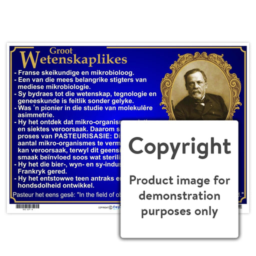 Groot Wetenskaplikes: Louis Pasteur Wall Charts And Posters