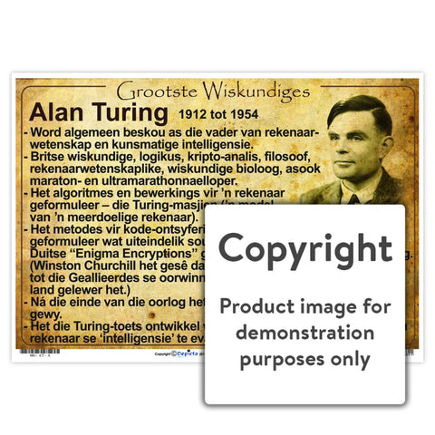 Grootste Wiskundiges: Alan Turing Wall Charts And Posters