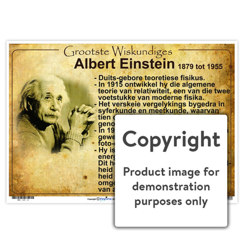 Grootste Wiskundiges: Albert Einstein Wall Charts And Posters