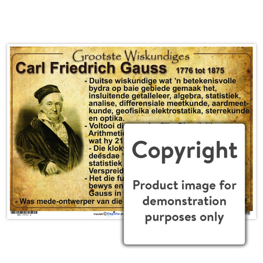 Grootste Wiskundiges: Carl Friedrich Gauss Wall Charts And Posters