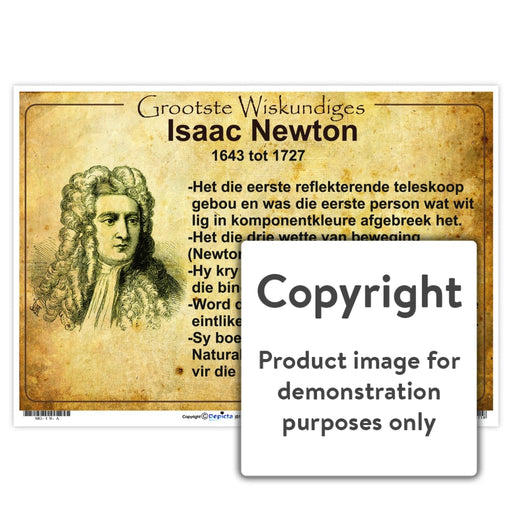 Grootste Wiskundiges: Isaac Newton Wall Charts And Posters
