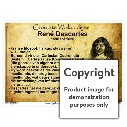 Grootste Wiskundiges: Rene Descartes Wall Charts And Posters