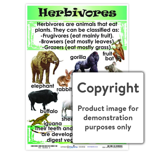 Herbivores Wall Charts And Posters