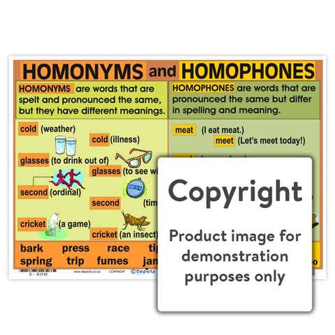 Homonyms And Homophones Wall Charts Posters