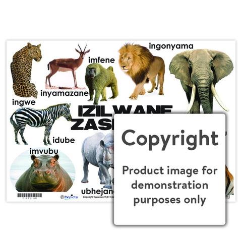 Izilwane Zasendle (Wild Animals) Wall Charts And Posters