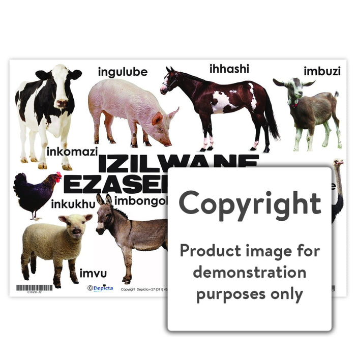 Izilwane Zasepulazane (Farm Animals) Wall Charts And Posters