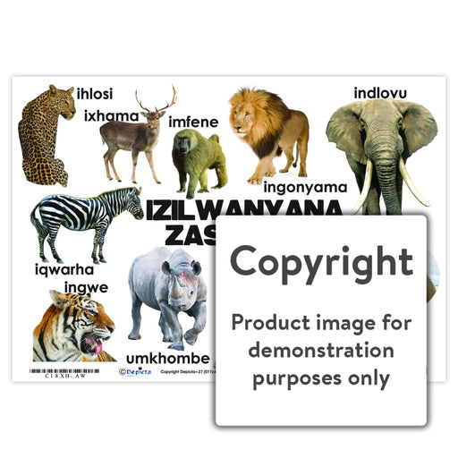 Izilwanyana Zasendle ( Wild Animals ) Wall Charts And Posters
