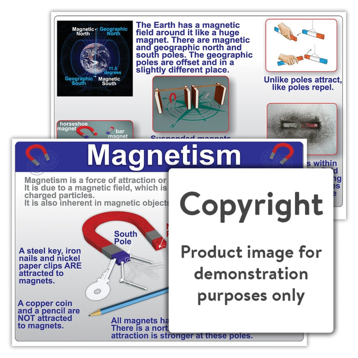 Magnetism Wall Charts And Posters