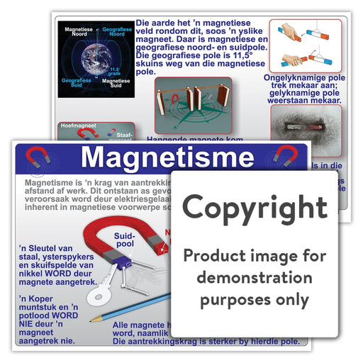 Magnetisme Wall Charts And Posters