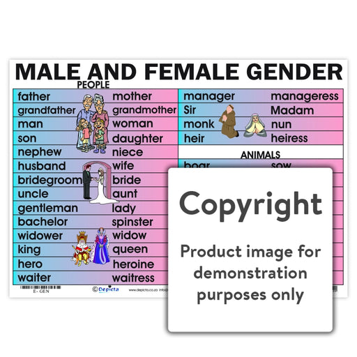 Male And Female Gender Wall Charts Posters