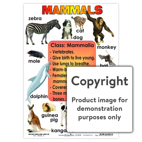 Mammals Wall Charts And Posters
