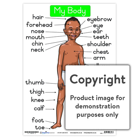 My Body - Black Boy Wall Charts And Posters