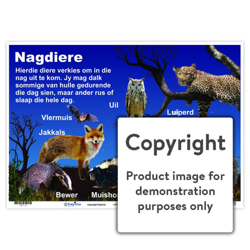 Nagdiere Wall Charts And Posters