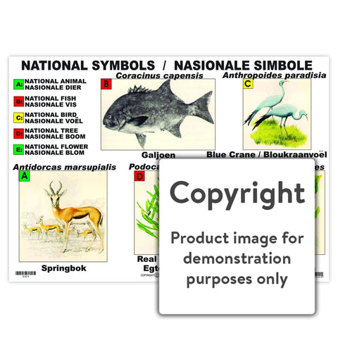National Symbols / Nasionale Simbole Wall Charts And Posters