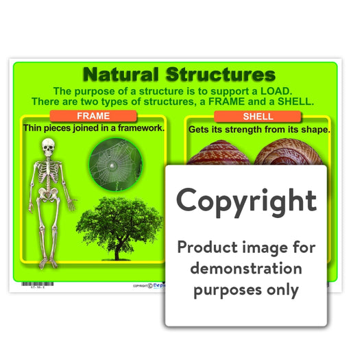 Natural Structures Wall Charts And Posters