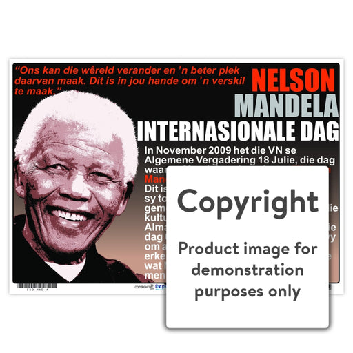 Nelson Mandela Internasionale Dag Wall Charts And Posters