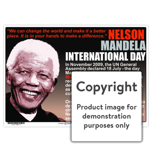 Nelson Mandela International Day Wall Charts And Posters