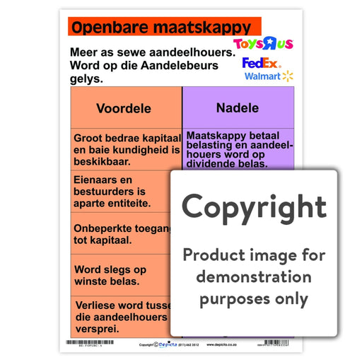 Openbare Maatskappy Wall Charts And Posters