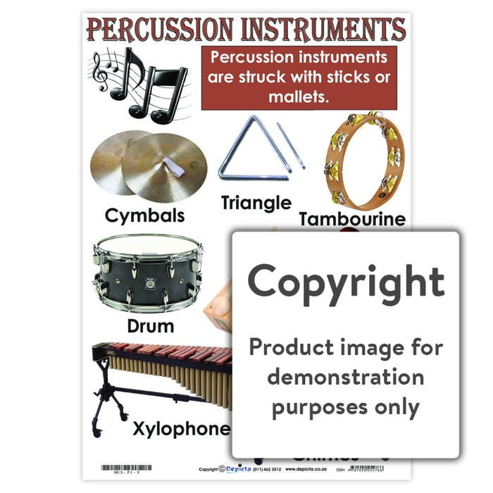 Percussion Instruments Wall Charts And Posters