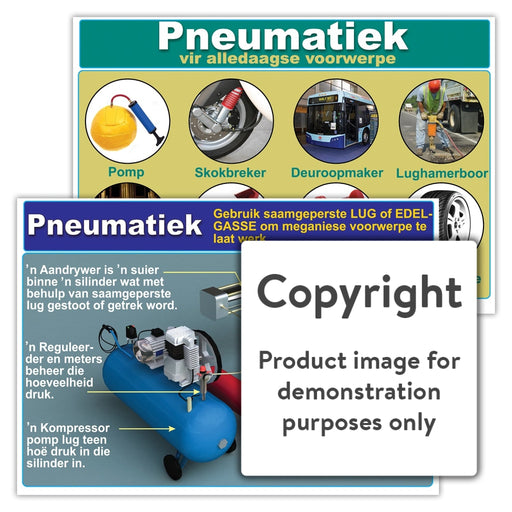 Pneumatiek Wall Charts And Posters