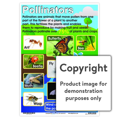 Pollinators Wall Charts And Posters