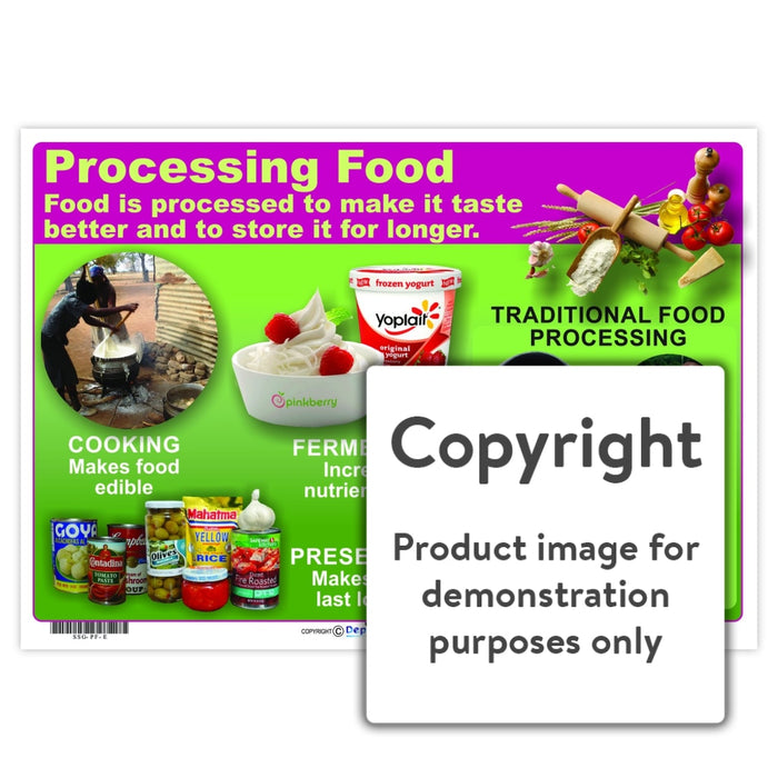 Processing Food Wall Charts And Posters