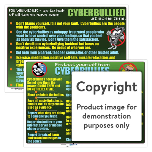 Protect Yourself From Cyberbullies Wall Charts And Posters