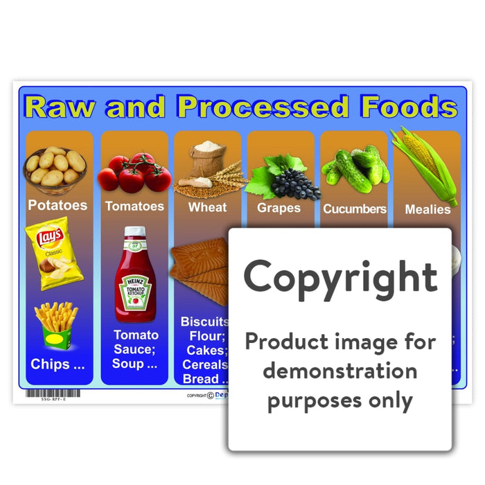 Raw And Processed Food Wall Charts Posters