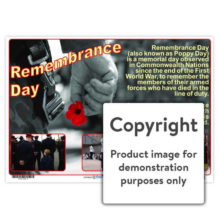 Remembrance Day Wall Charts And Posters