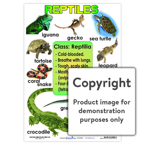 Reptiles Wall Charts And Posters