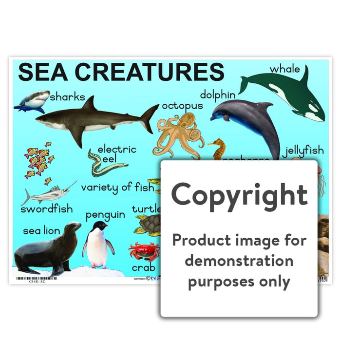Sea Creatures Wall Charts And Posters