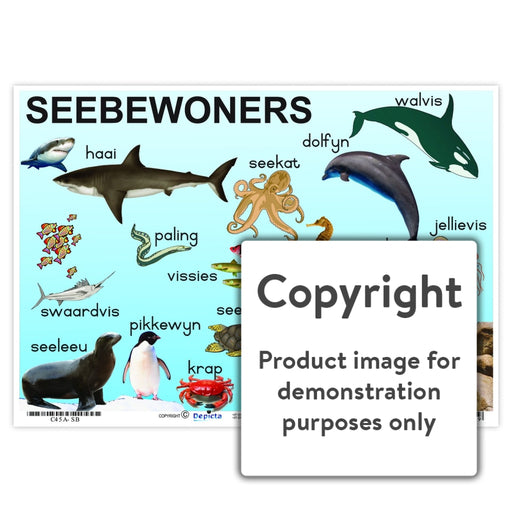 Seebewoners Wall Charts And Posters