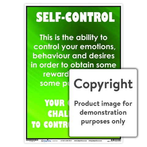 Self-Control Wall Charts And Posters