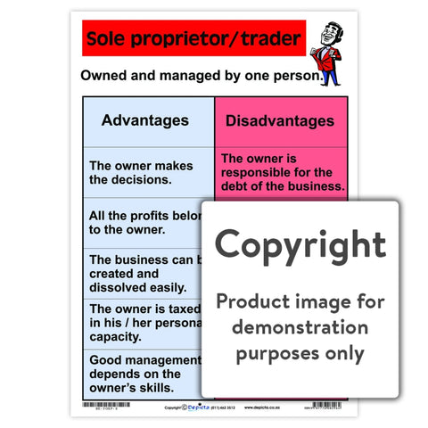 Sole Proprietor/trader Wall Charts And Posters