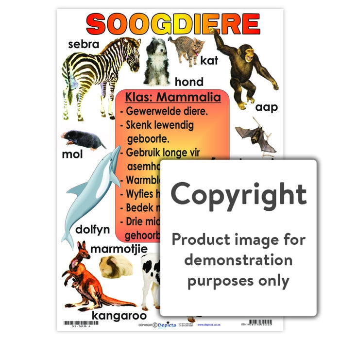 Soogdiere Wall Charts And Posters