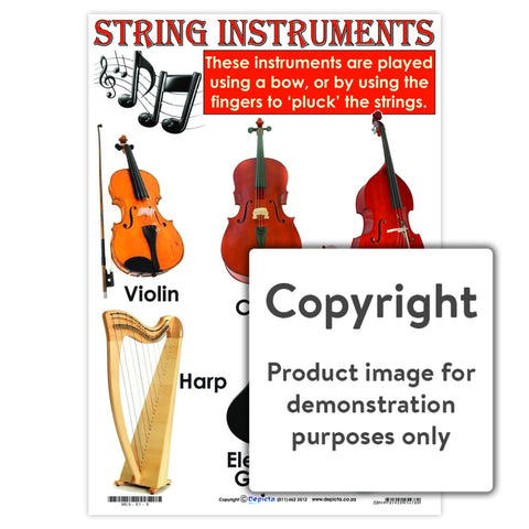 String Instruments Wall Charts And Posters