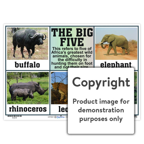 The Big Five Wall Charts And Posters