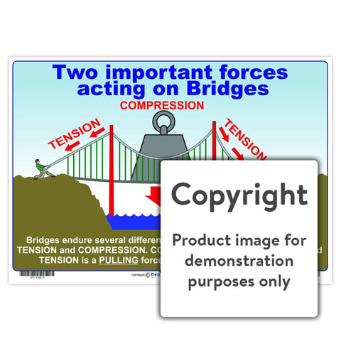 Two Important Forces Acting On Bridges Wall Charts And Posters
