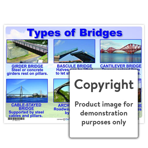 Types Of Bridges Wall Charts And Posters