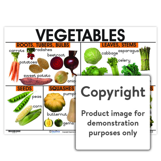 Vegetables Wall Charts And Posters