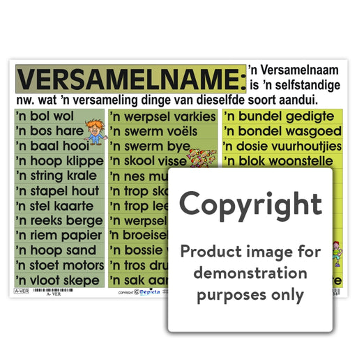 Versamelname Wall Charts And Posters