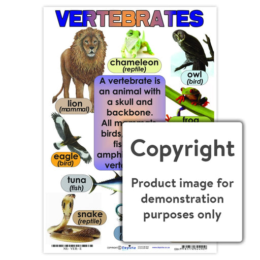 Vertebrates Wall Charts And Posters