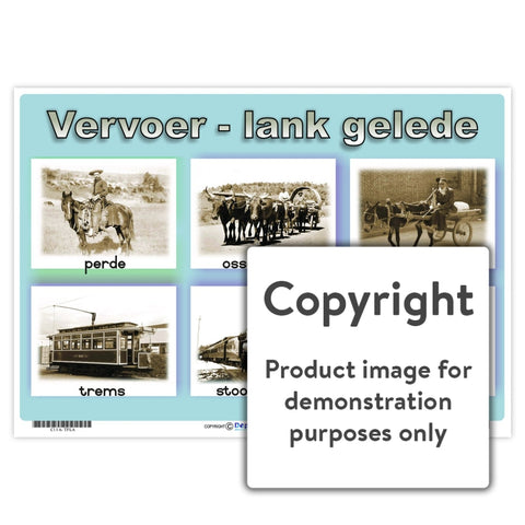 Vervoer - Lank Gelede Wall Charts And Posters