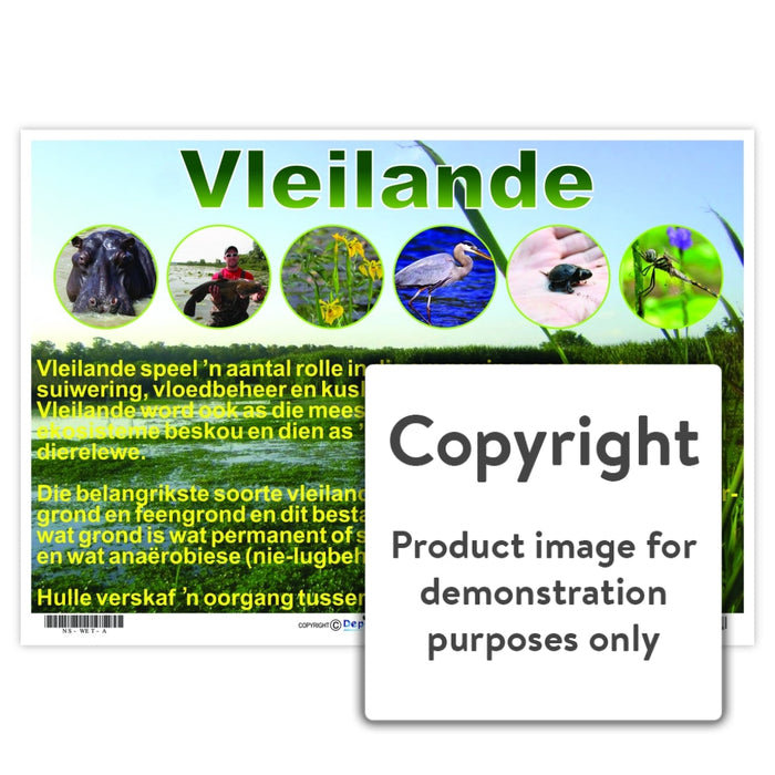 Vleilande Wall Charts And Posters