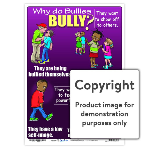Why Do Bullies Bully (Primary School) Wall Charts And Posters