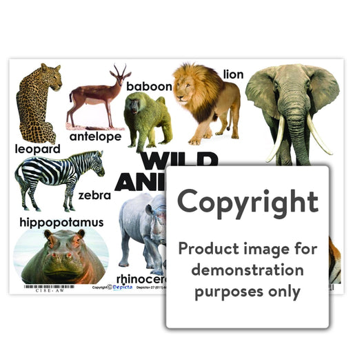 Wild Animals Wall Charts And Posters