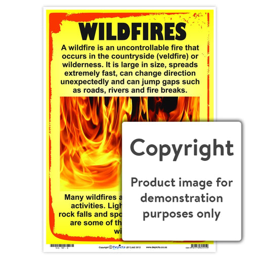 Wildfires Wall Charts And Posters