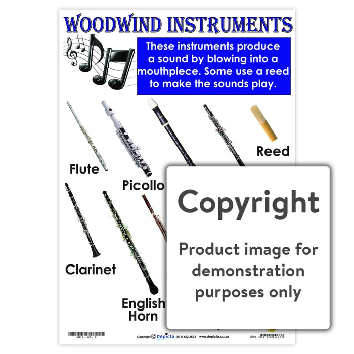 Woodwind Instruments Wall Charts And Posters
